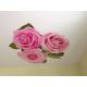 Натяжной потолок арт печать Н2.1