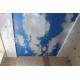 Двухуровневый потолок арт печать